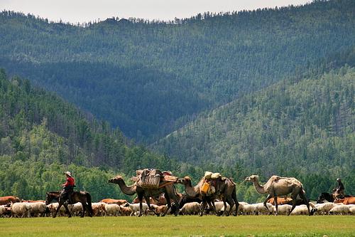 Nomads-mongols